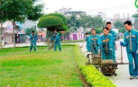 Cây Xanh Đô Thị